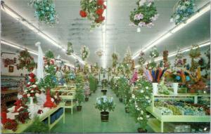 Sarasota Florida Florist - Eiss'  Flower Shop