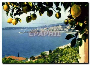 Modern Postcard The French Riviera miracle of nature Menton M general view
