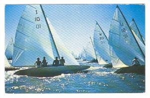 A spanking breeze,full sails and blue water, Beulah,Michigan,PU-1961