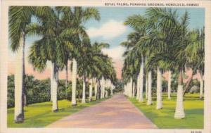 Hawaii Honolulu Royal Palms Punahou Grounds Curteich