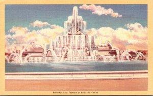 Michigan Detroit Belle Isle Beautiful Scout Fountain Dexter Press