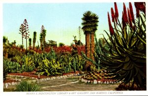 California San Marino The Henry E Huntington Library & Art Gallery The Cactus...
