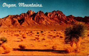 New Mexico The Organ Mountains