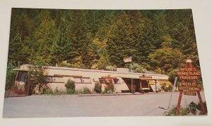 Armstrong Redwoods RPPC Nature's Wonderland Museum Postcard Guerneville CA
