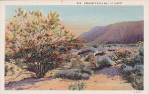 Creosote Bush On The Desert Los Angeles California