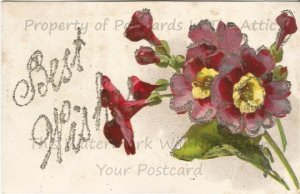 Purple Four O'Clock Flowers Old Fashioned Flower Silver Glitter Vintage Postcard