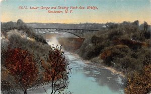 Lower Gorge Rochester, New York Postcard
