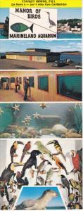 Marineland Aquarium , Stanley Bridge , PEI , Canada , 50-60s