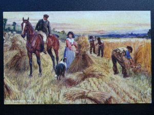Country Rural Life THE HARVEST FIELD c1908 Postcard by Raphael Tuck 9514