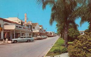 Venice Florida Palm Lined Blvd Business Area Vintage Postcard K71377