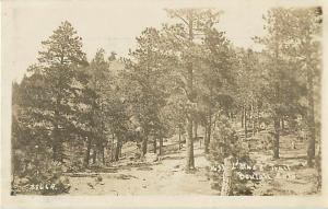 RPPC of L'Mace? Trail Beulah Colorado CO