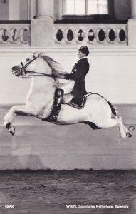 Wien Kapriole Spanische ReitSchule Spanish Riding School Postcard