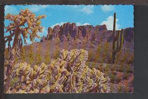 Cactus Superstition Mountain Phoenix AZ Postcard BIN