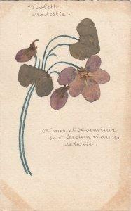 Natural pressed violet flowers handmade vintage postcard herbarium