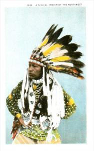 9959 Native American Indian of the Northeast  REPRO