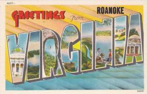 Greetings From Roanoke Virginia Large Letter Linen