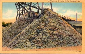 Virginia Hampton A Mountain Of Oyster Shells Curteich