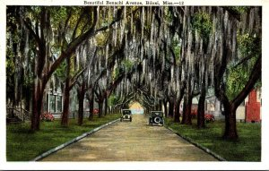 Mississippi Biloxi Beautiful Benachi Avenue