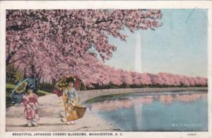Washington D C Washington Monument and Cherry Blossoms Curteich