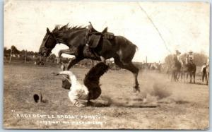 Rodeo RPPC Postcard A Nice Gentle Saddle Pony Doubleday Photo 1917 Cancel