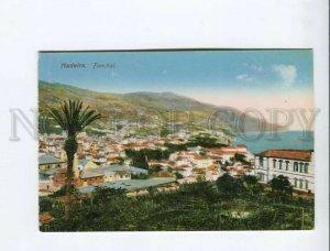 3173100 PORTUGAL MADEIRA FUNCHAL view Vintage postcard