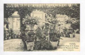 Patio De La Casa De D.Gomez,Cordoba,Spain,1900-10s