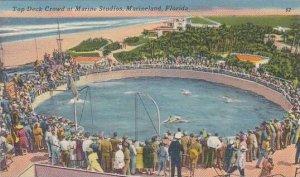 Florida Marineland Top Deck Crowd At Marine Studios