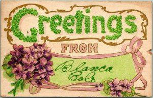 1910 GREETINGS from BLANCA Colorado Embossed Postcard Purple Flowers w/ Cancel