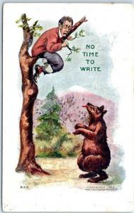 1906 Artist-Signed H.H. TAMMEN Postcard Man Treed by Bear No Time to Write