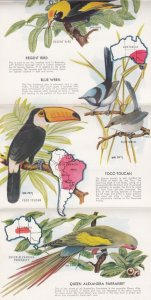 BROOKFIELD, Illinois, 30-50s; Folder of Rare Birds of the Chicago Zoological ...