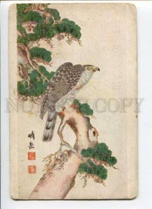 289003 KAKEMONO japanese picture FALCON russian St.Eugenie Red Cross postcard