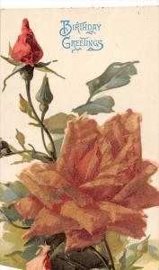 Rose, raised flower , Tuck no 6121