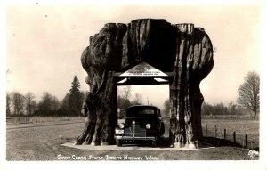 Washington - RPPC - The Giant Cedar Stump - Pacific Highway - 1950s