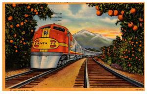 Santa Fe's Super Chief  traveling thru orange groves California