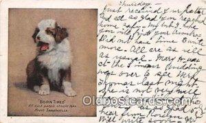Born Tired Hood's Sarsaparilla Dog 1908