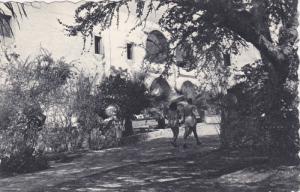Hacienda Vista Hermosa , Tequesquitengo, Mor. , Mexico , PU-1959