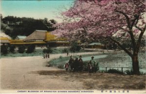 PC CPA YOKOHAMA cherry blossoming Sainkei-en garden honmoku JAPAN (a17711)