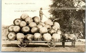 190 9COLORADO Exaggeration RPPC Postcard A Load of Colo. Apples Martin Photo