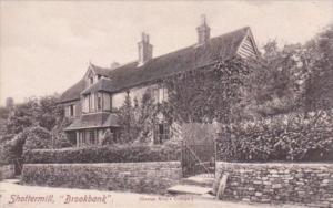England Shottermill Brookbank
