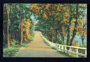 Sheffield, Massachusetts/MA/Mass Postcard, Country Road, 1952!