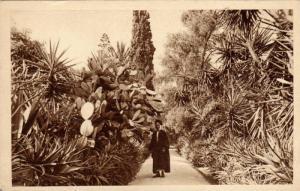 Jardin de l´Hotel, Saint-Gorge, Algeria, Africa, 1910-1920s