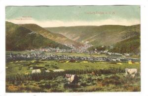 Traben-Trarbach (Rhineland-Palatinate), Germany, 1900-1910s