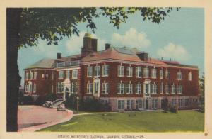 GUELPH , Ontario, 1930s ; Ontario Veterinary College