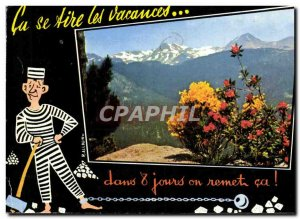 Postcard Modern Genets and Rhododendrons in the Massif Carlitte basically the...