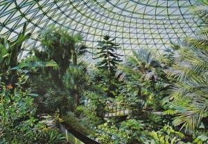 Canada Vancouver Bloedel Conservatory Interior