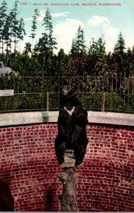 Washington Seattle Woodland Park Bear Pit