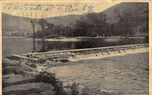 Walton New York Haverlys Dam Scenic View Antique Postcard K57706