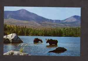 ME Mt Mount Katahdin Baxter State Park MAINE Postcard Sandy Stream Pond