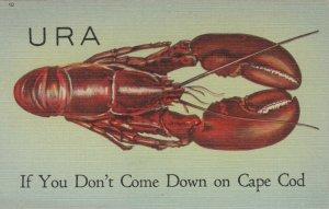 CAPE COD , Massachusetts, 1930-40s ; URA.....
