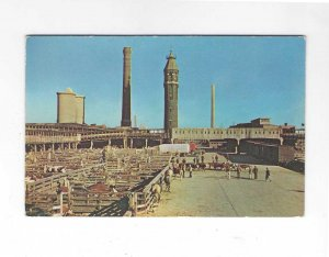 Vtg 50's Chicago Stock Yards, Chicago, Illinois Postcard